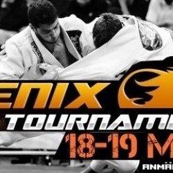 Fenix BJJ tournement results