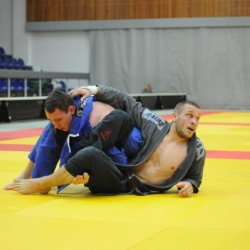 Results of the Finnish BJJ Open 2014